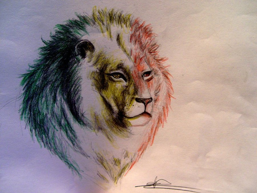 Rasta Lion Drawing At Getdrawings Com Free For Personal Use Rasta
