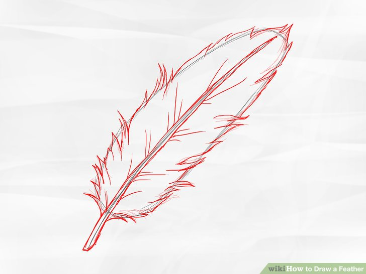 728x546 How To Draw A Feather 8 Steps (With Pictures)