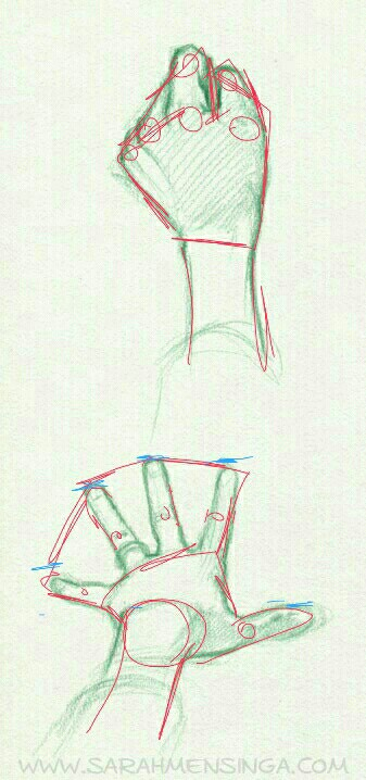 337x718 Drawing Reference Hands Reaching Out Drawing Tips