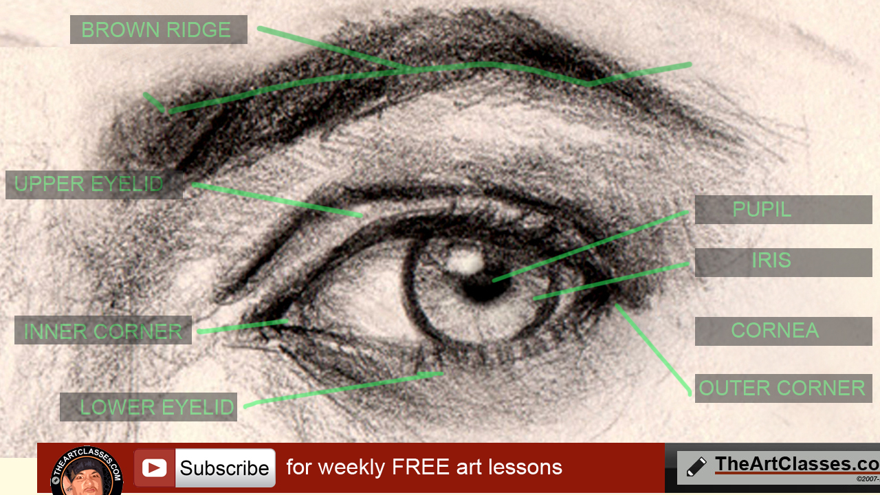1280x720 How To Draw Eyes Structure And Anatomy