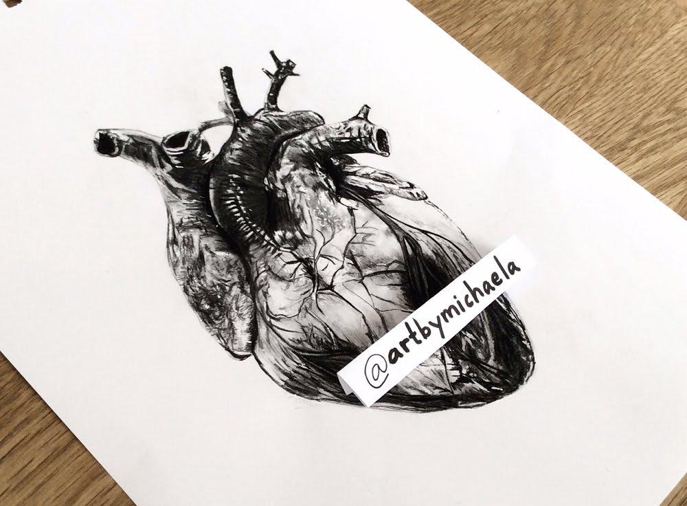 1000x736 Drawing A Human Heart