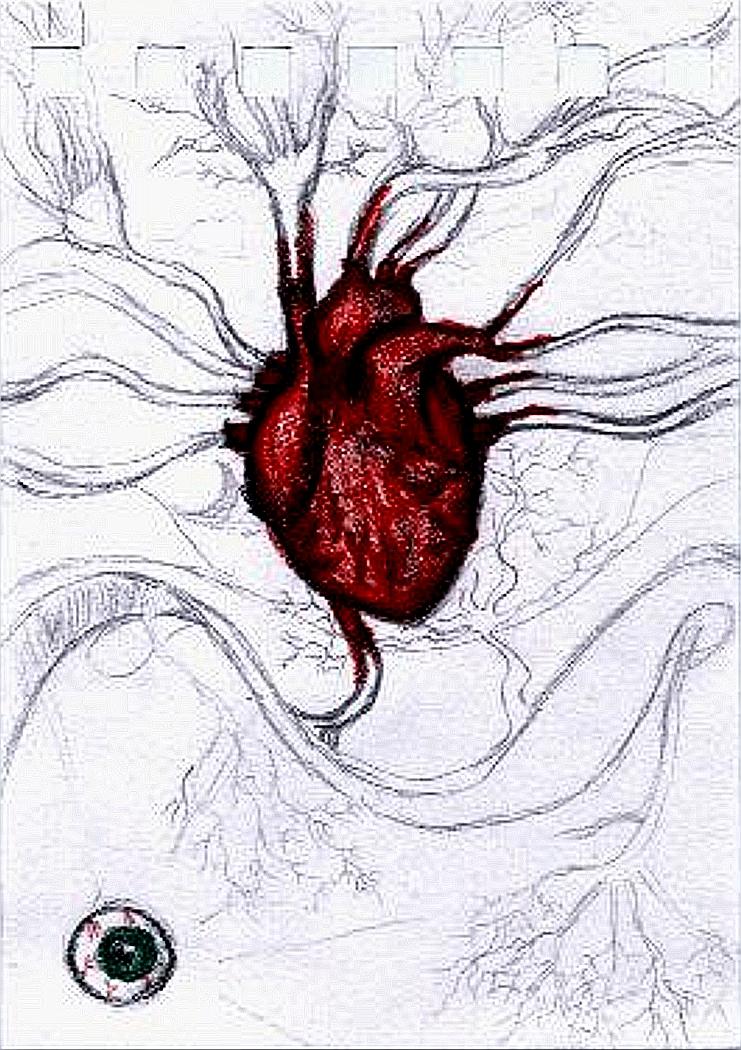 741x1050 Human Heart Drawing