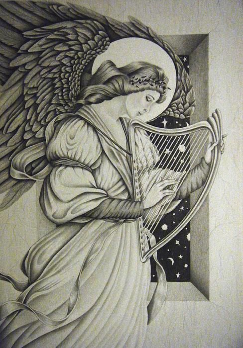 488x700 harp drawing