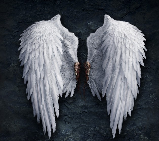 628x559 Angel Wings Star Tattoo On Back