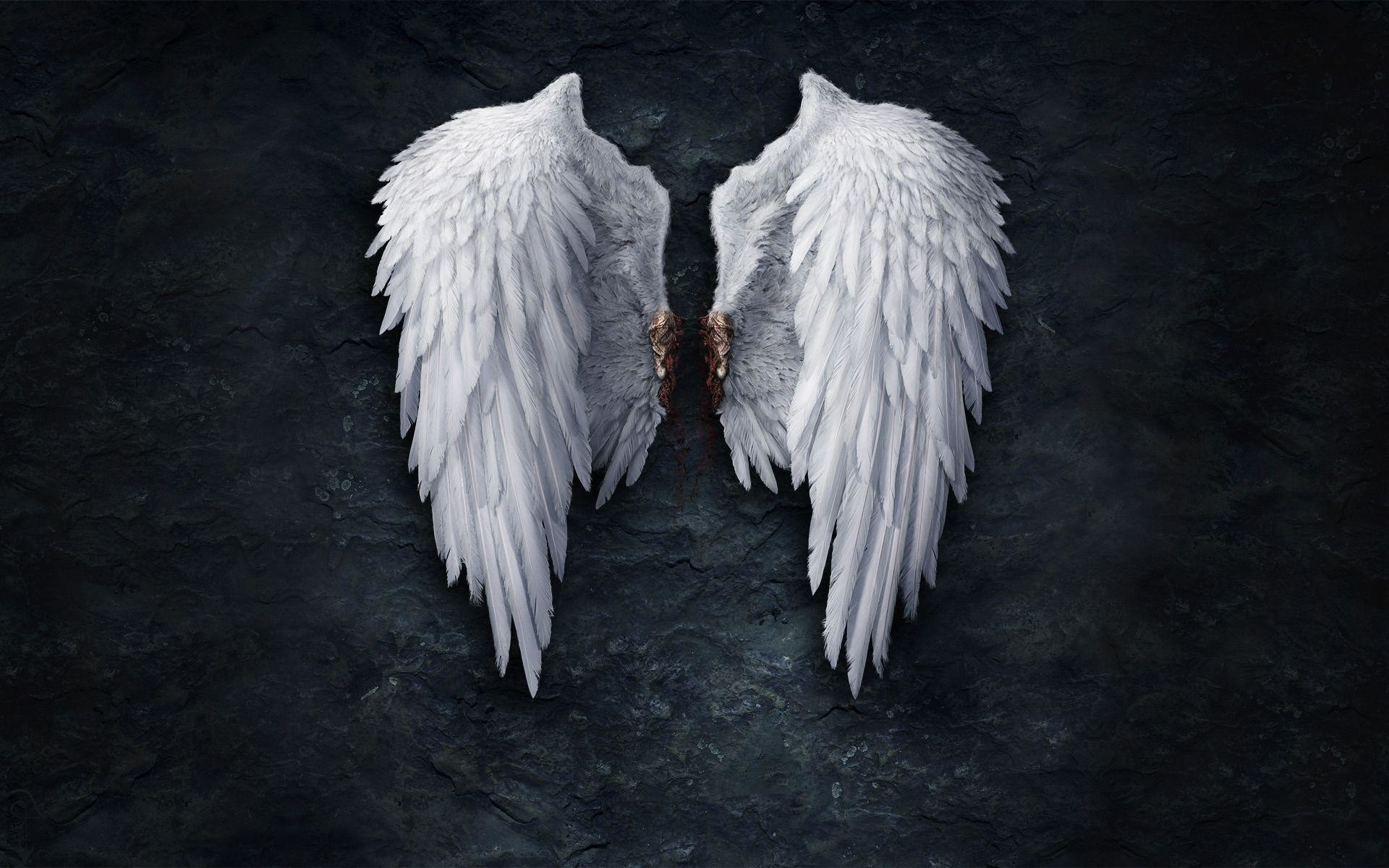 1920x1200 Wallpaper Angel Wings Images)