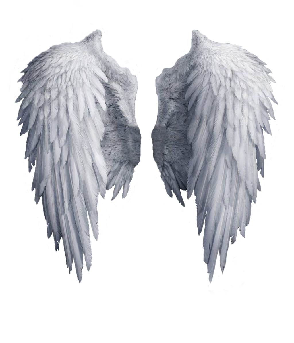 1024x1192 Wings Png Images Free Download, Angel Wings Png
