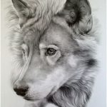 150x150 Drawing Realistic Animals Best 25 Animal Drawings Ideas