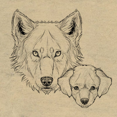 400x400 How To Draw Animals Dogs And Wolves, And Their Anatomy