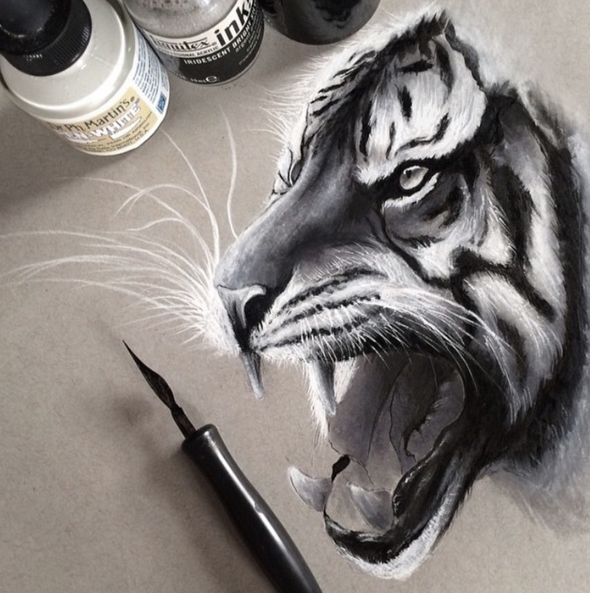 590x593 Stunning Animals Realistic Pencil Drawing By Jonathan Martinez