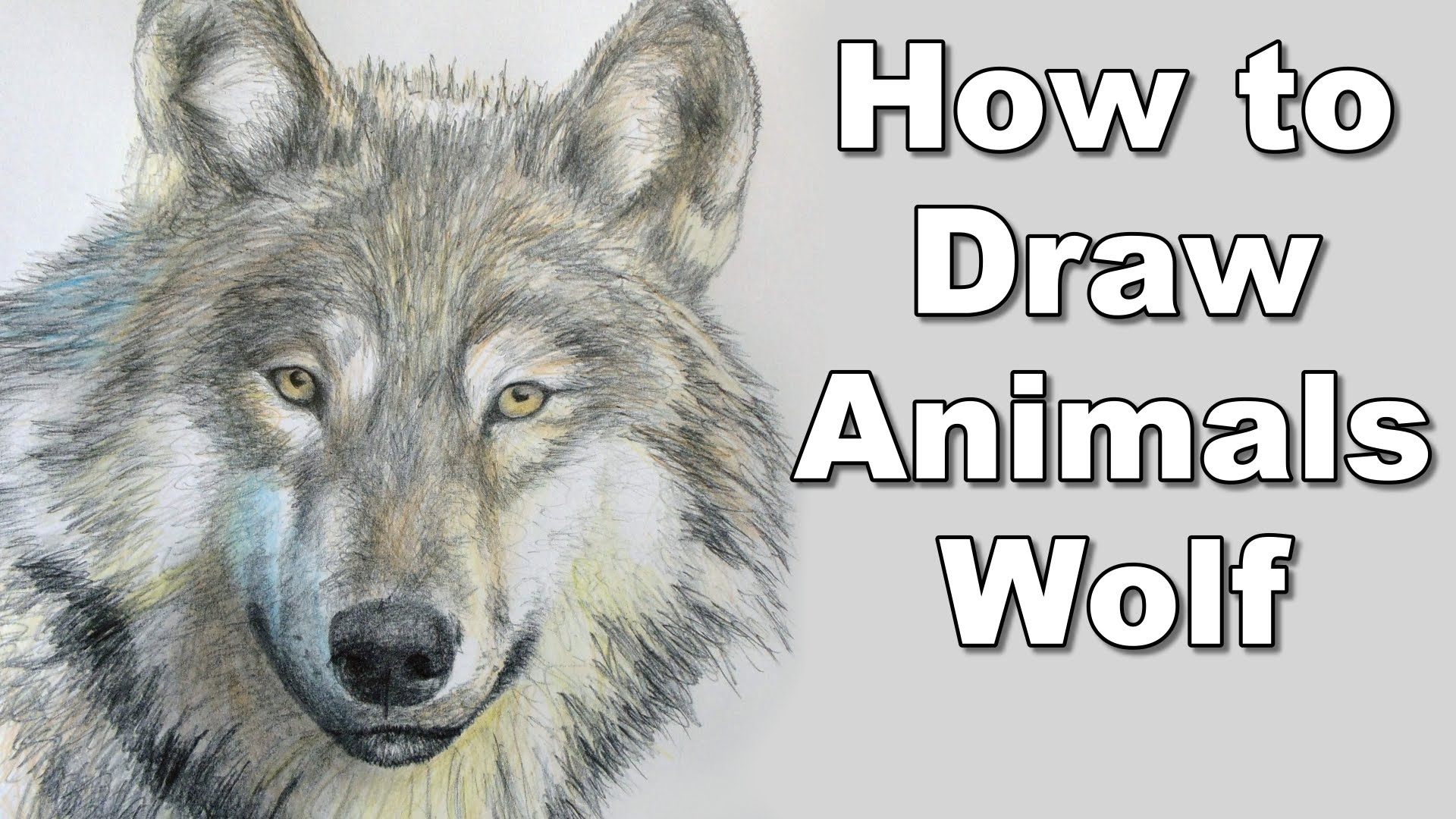 1920x1080 How To Draw A Wolf