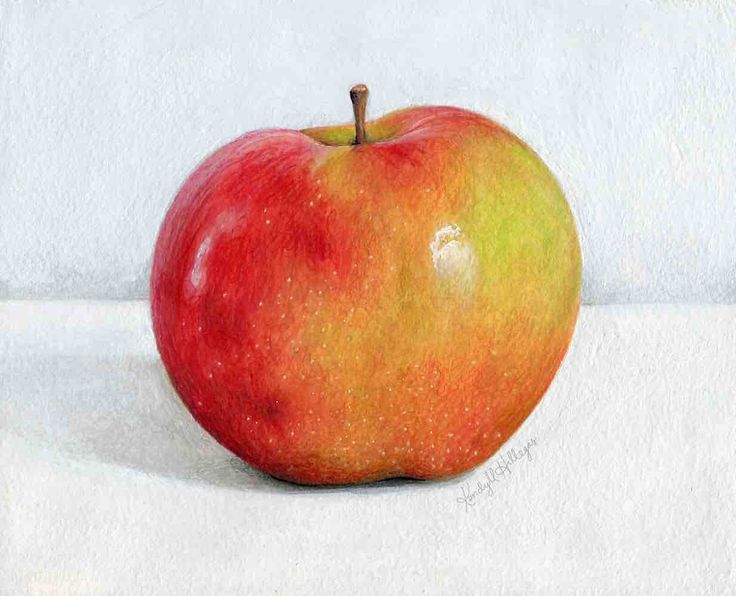736x596 149 Best Apples Images On Still Life Drawing, Wine