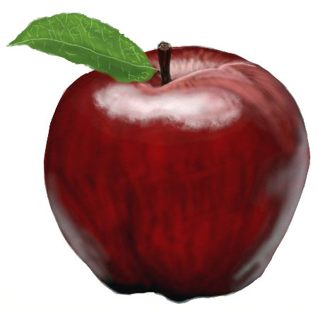450x441 How To Draw An Apple