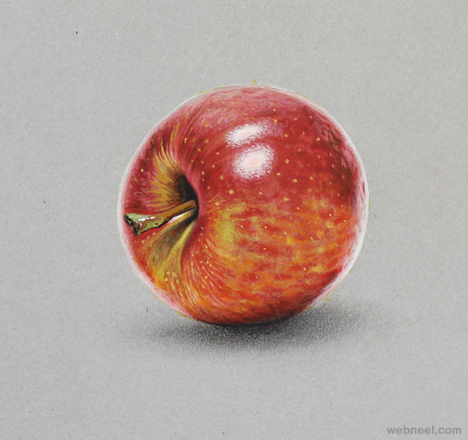660x620 Apple Realistic Drawing By Marcello Barenghi Drawings