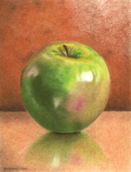 537x700 Green Apple Realistic Color Pencil Drawing 23