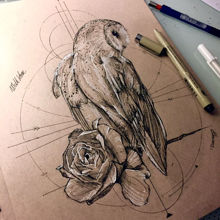 736x736 Best Barn Owl Tattoos Amp Designs With Meanings