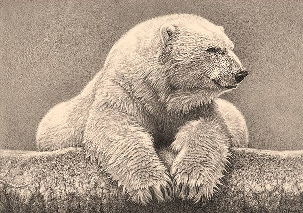 608x428 42 Incredibly Realistic And Adorable Pencil Illustrations