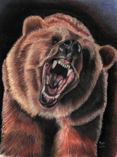 375x501 Print Of Pastel Drawing Bear Greeting Charcoal Arts Paintings