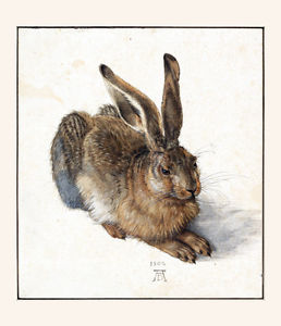 258x300 18x24poster Decor.room Art Print.bunny.rabbit.realistic Drawing