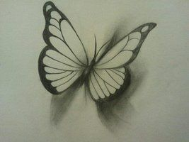 267x200 3d Butterfly Drawing