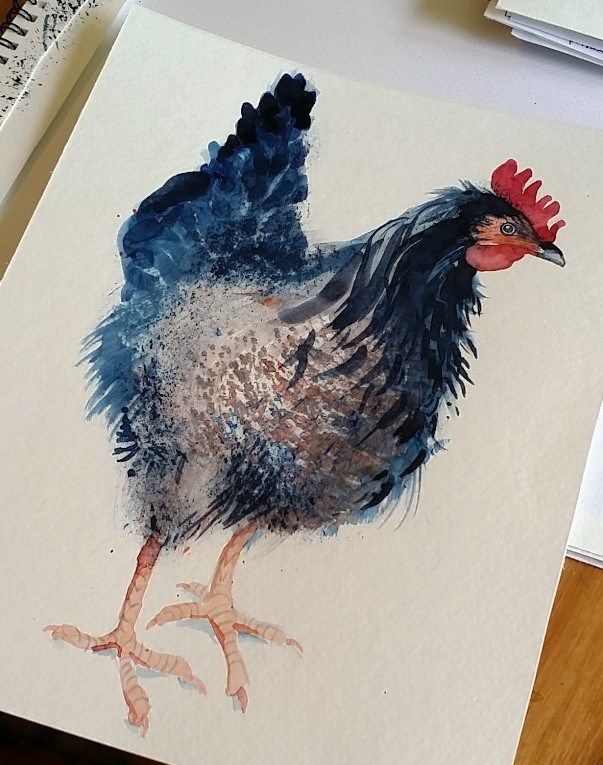 603x765 362 Best Roosters And Chickens Images On Pinterest Chicken Art