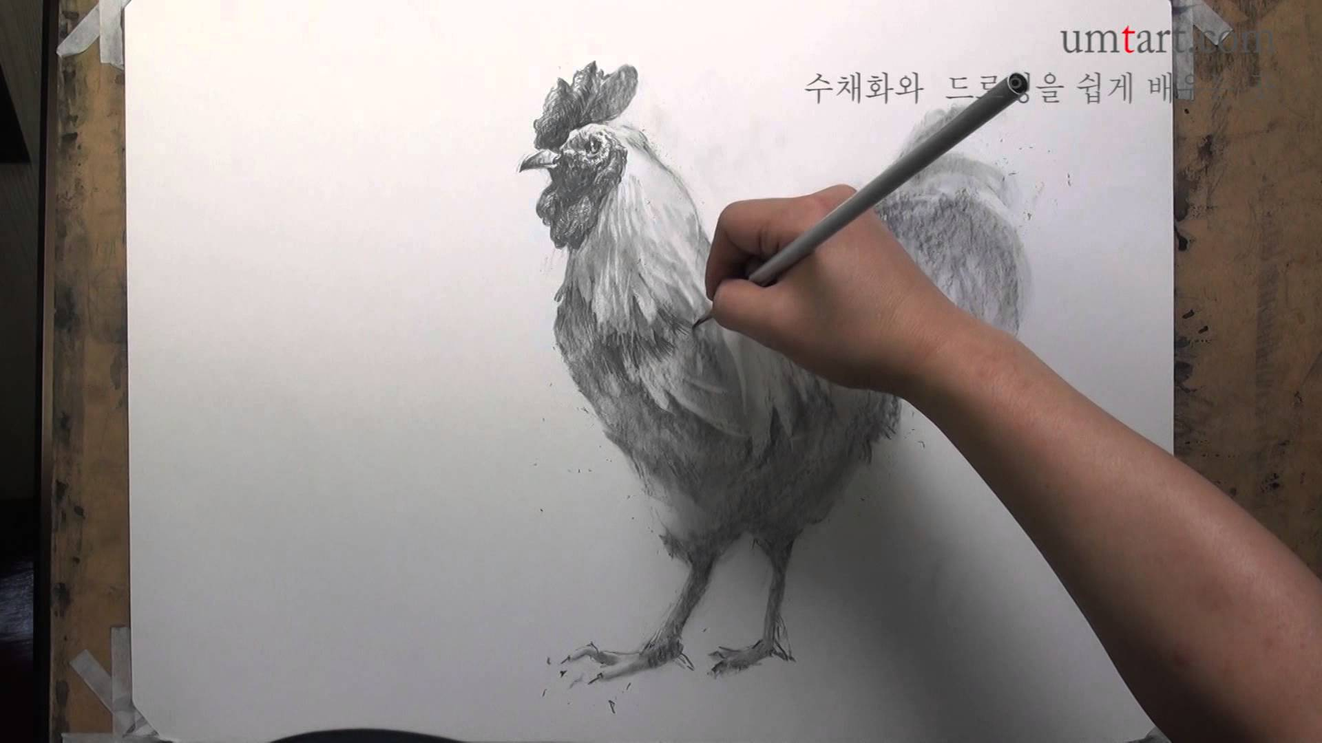 1920x1080 How To Draw The Chicken By Um Kyungho