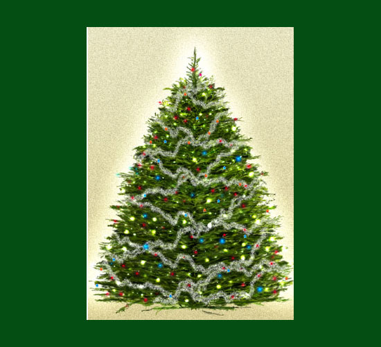 550x500 Pictures Christmas Tree Drawing Realistic,