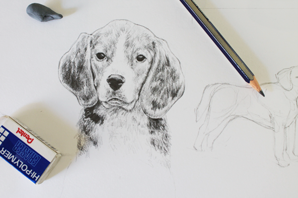 600x400 Drawing Realistic Animals How To Draw A Dog