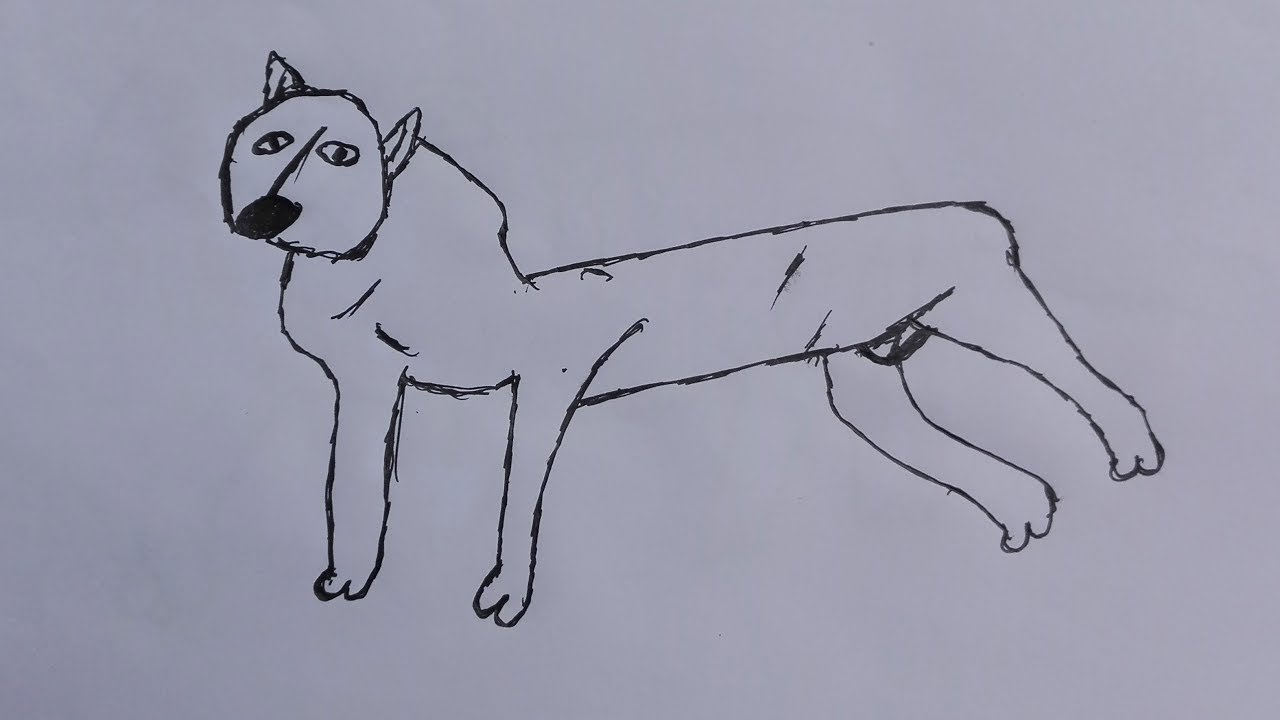 1280x720 How To Draw A American Stafforces Dogs Draw A Realistic Dog Step