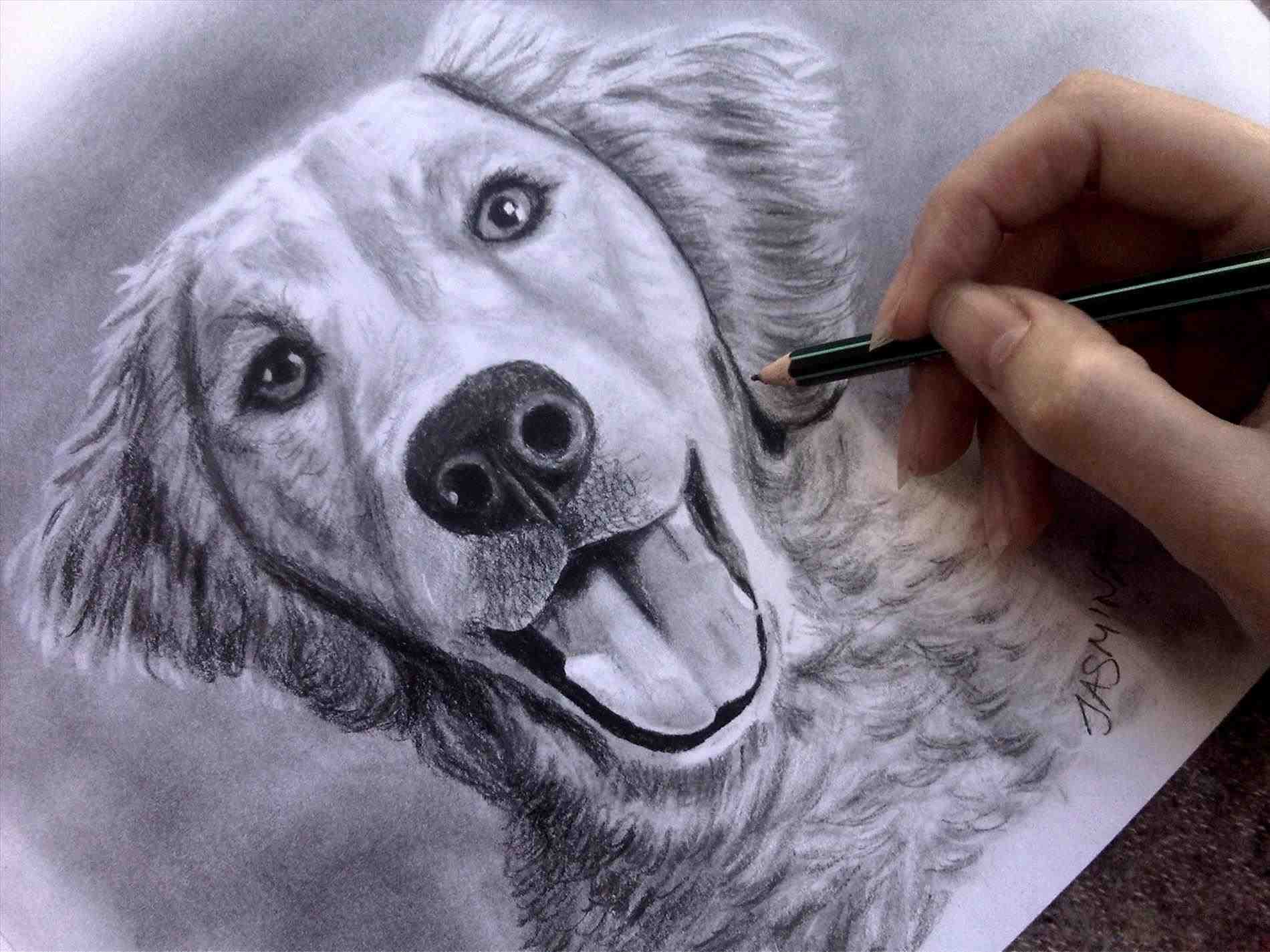 1900x1425 The Images Collection Of Drawn Realistic Dog Drawing Cat Cute