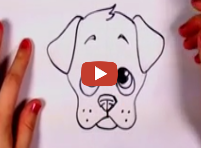639x473 how to draw a dog realistic amp cartoon dog step by step my how to