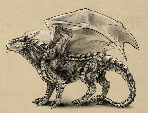 600x458 Rawr! How To Draw An Anatomically Correct Dragon