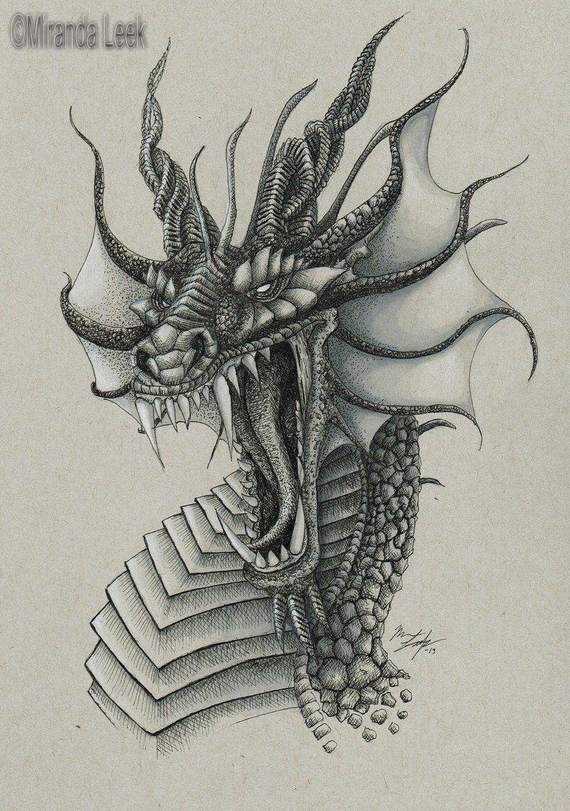800x1137 Realistic Dragon Drawings Dragon Bust By Redcoaster