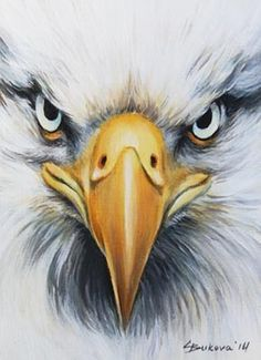 236x325 Aceo Original Art Eagle Close Up Face Bird Detailed Oil Painting