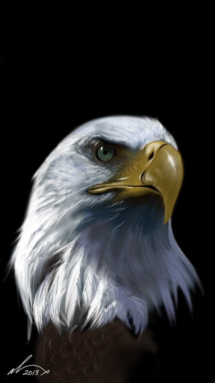 720x1280 Drawing A Realistic Eagle With My Galaxy Note 2 Hd Download