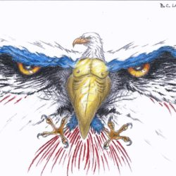 250x250 Eagle Drawing, Pencil, Sketch, Colorful, Realistic Art Images