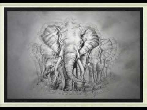 480x360 Amazing Elephant Drawing! In Hd! Step By Step.