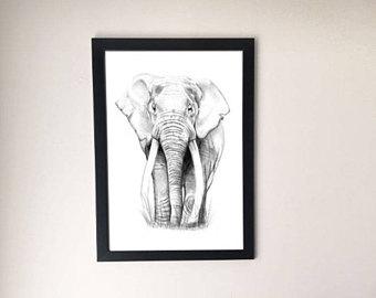 340x270 Elephant Drawings Etsy