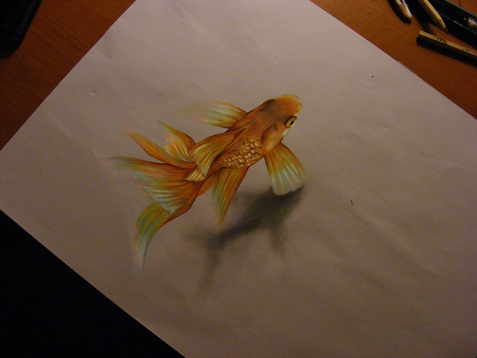 960x720 The Most Realistic Fish Drawing Ever!!!! Animals