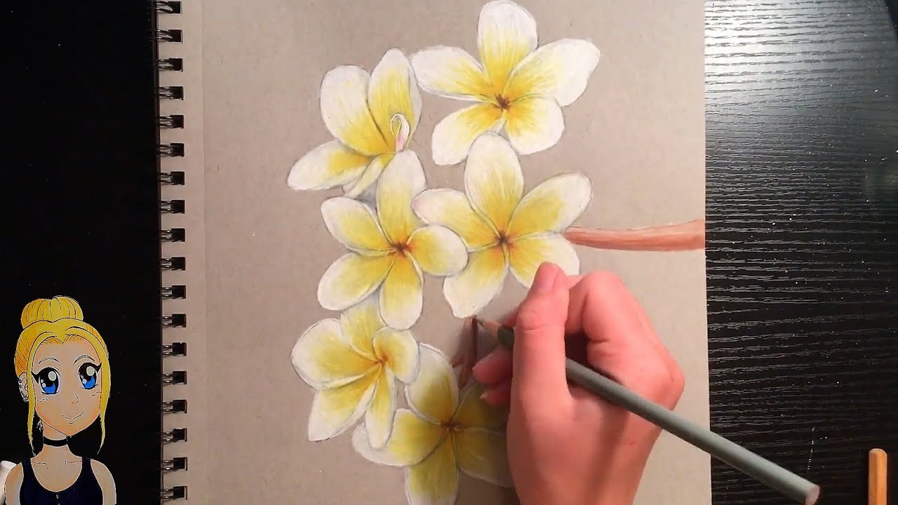 1280x720 How To Draw Realistic Flowers! With Colored Pencils