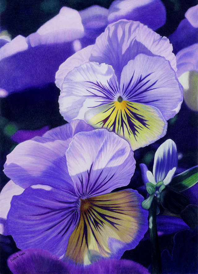Realistic Flowers Drawing At Getdrawings Com Free For Personal Use