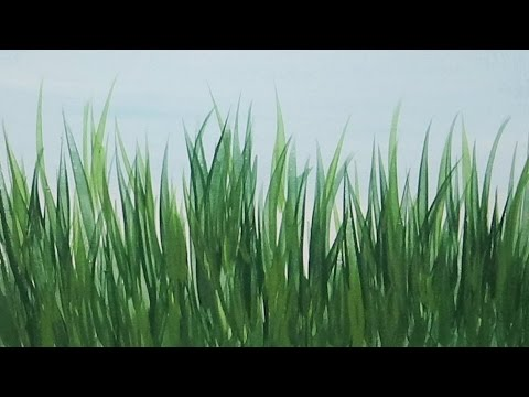480x360 Acrylic Painting How To Paint Tall Grass Quick And Easy Painting