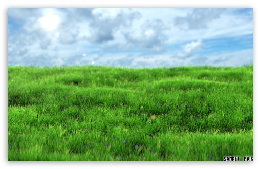 510x330 Realistic Grass 4k Hd Desktop Wallpaper For 4k Ultra Hd Tv