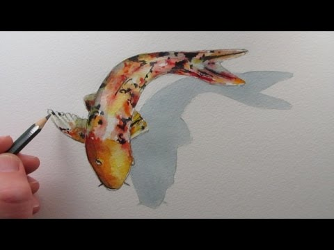 480x360 How To Draw A Fish Koi Carp Narrated Step By Step