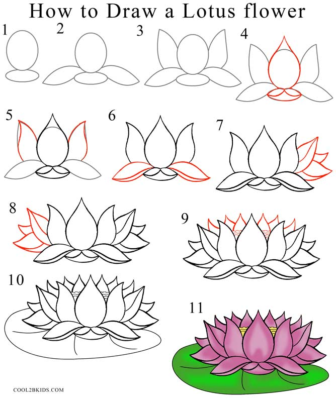 668x800 How To Draw Lotus Flower (Step By Step Pictures) Cool2bkids