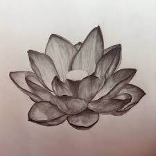225x225 One Of The Reasons That Lotus Flowers Are Considered So Sacred Is
