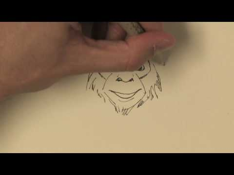 480x360 Drawing Amp Illustration How To Draw A Real Monkey