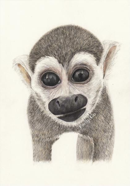 421x600 My Colour Pencil Drawing Of The Adorable Heather The Squirrel