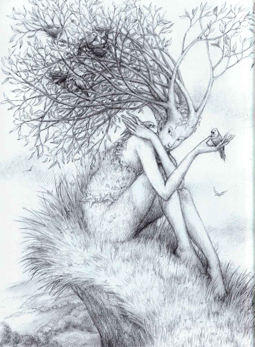 883x1201 realistic pencil drawings of nature