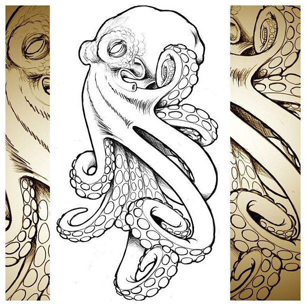 realistic octopus drawing at getdrawings com free for personal use