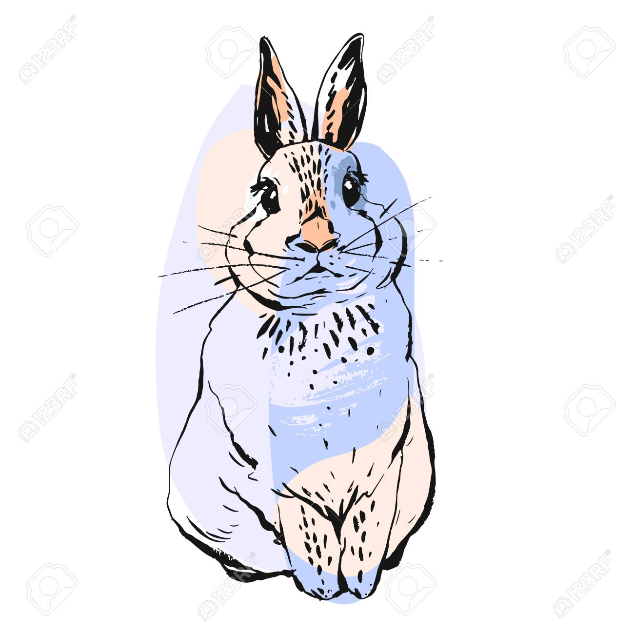 1300x1300 Hand Drawn Vector Abstract Realistic Drawing Bunny Illustration
